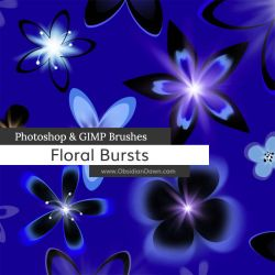 Floral Bursts Photoshop and GIMP Brushes by redheadstock