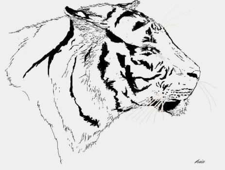 tiger drawn in ms paint  by Kuro1nu