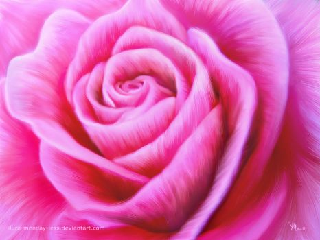 sweet rose in oil by ilura-menday-less