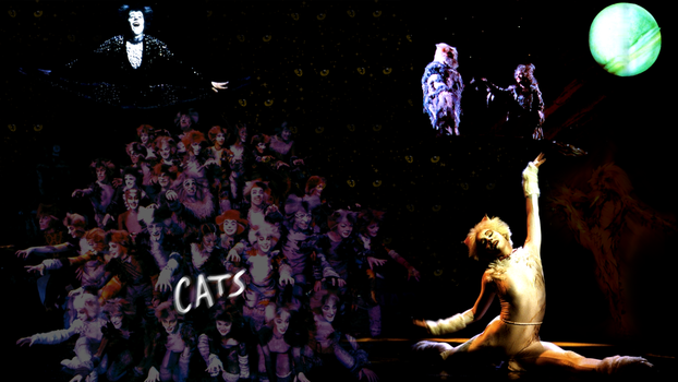 CATS wallpaper by xXLionqueenXx