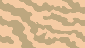 NLR Air Force Desert 2 Camouflage Pattern by lonewolf3878