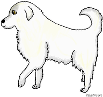 Great Pyrenees by itsjustmebre