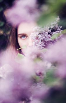 lilac pt II by Snowfall-lullaby