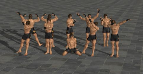 DOA Male Poses Volume 2 feat. DarkSun64 by SpiderMike1991