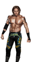 WWE Heathslater 2014 Render by Dinesh-Musiclover