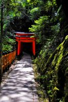 Torii Gates by SeanAustinFotography