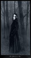 Her Ghost in a Fog by amalie