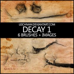 Decay Brushes by Leichnam