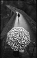 Umbrella on a bridge by iyidin