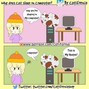 Why does Cat sleep on Computer? by Catifornia
