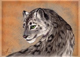 Smile of a snow leopard by AlviaAlcedo