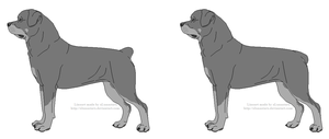 Free Rottweiler Lines- Female With Docked Tail by xLunastarx