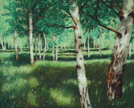 Birch Grove by hepiladron
