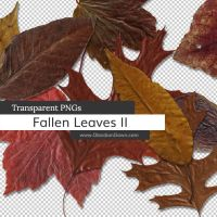 Fallen Autumn Leaves II PNGs by redheadstock