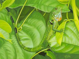 Iguana Verde by VeroniqueHope