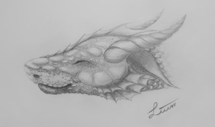 Just a happy little Dragon by LiussSteen