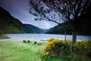 Glendalough II by Yassser84