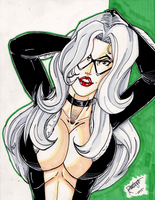 Black Cat Sketch by DaveKennedy
