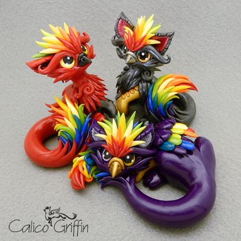 Paco, Rico and Kaiko - the Rainbow Griffins by CalicoGriffin