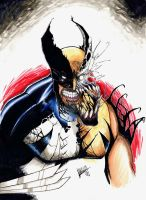 Wolverine/Venom mashup art, Copic colors. by Shawn-Langley