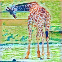 Animalia - Girafa by Egil21