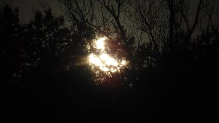 Partial Solar Eclipse 10/23/2014 by FullElven