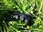 Gamepad in grass by Abios77