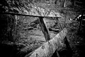 Planks by GeoffroyVincens