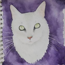 Ghostly cat by CaptainBeth