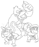 Diddy, Dixie and Donkey Kong by TrainerHinaru