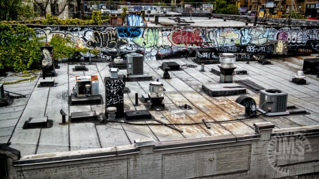 The Roof and its Appliances by steeber