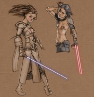Jedi vs Sith by Petarsaur