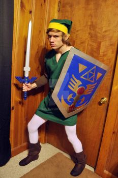 Legend of Zelda: A Link to the Present by Turlguy