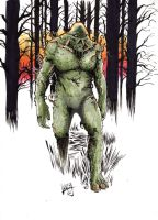 Swamp Thing, finished colors by Shawn-Langley