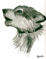 Wolf by Catr