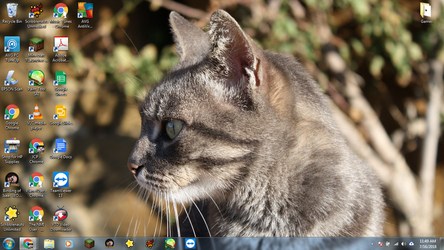 Windows 7 Desktop: Kitten Face by jcpag2010