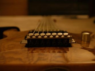 My 7 string (1 of 3) by toyflamethrower1
