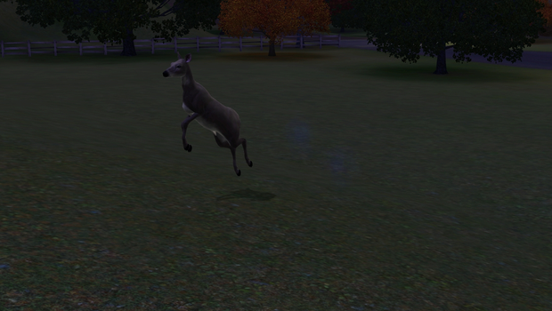 Fun with Sims 3 pets 3 by Lolalilacs