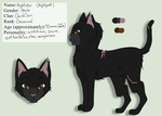 Nightstar Reference- Outdated by drawingwolf17