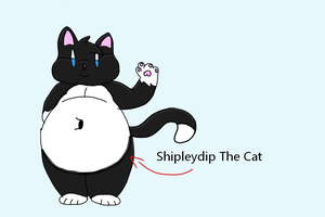 Reference for RP by DippyTheCat