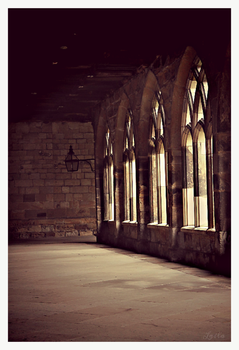 Durham Cathedral Cloisters by dreamsofwinter