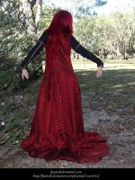 Rose Red18 by faestock