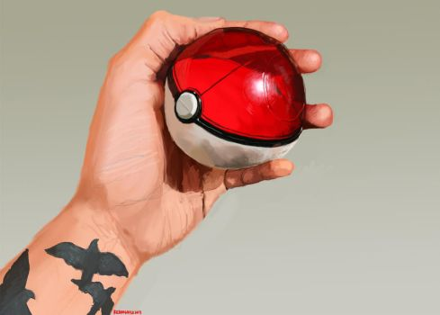 The Pokeball by wylieblais