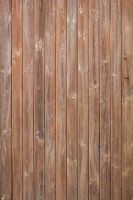 Wood Texture - 19 by AGF81