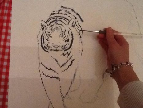 White tiger 1 by megumi16