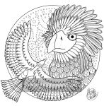 Philippine Eagle (The Exotic Colouring Book) by megcowley