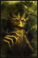 Treebeard by Suzanne-Helmigh