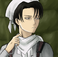 Levi (Cleaning) by TheKohakuDragon