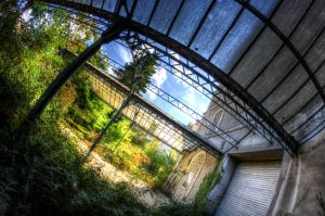 Greenhouse by Deadcam