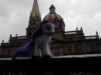Rarity in guadalajara pic1 by ShynieOshawott64